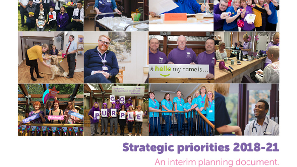 Interim Strategic Priorities